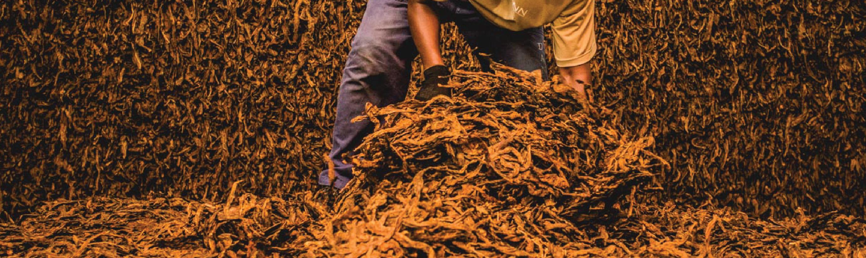 DANNEMANN Tobacco • Excellence • Craft - fullsize header image